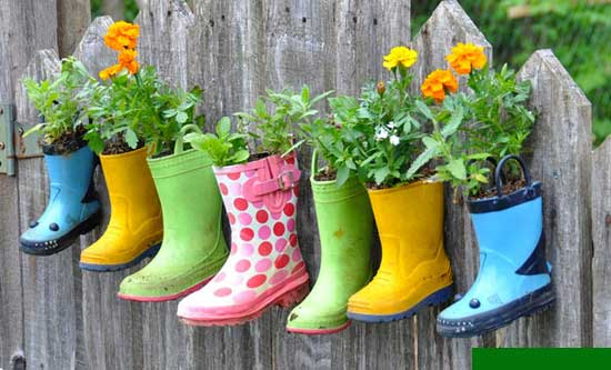 Planter Ideas,