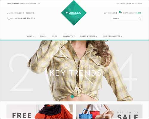 eCommerce WordPress Themes,