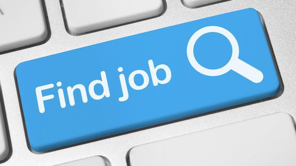 searching best job,