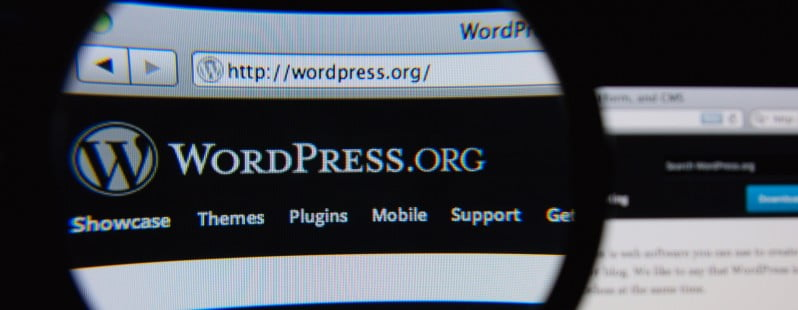 WordPress Plugin, Share Old Post,
