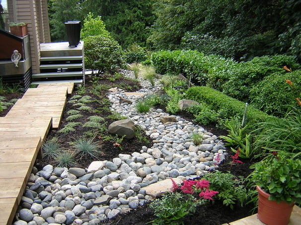 Landscape ground cover ideas