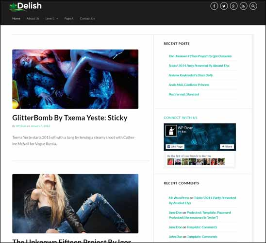 delish-free-wordpress-theme, Free Responsive WordPress Themes,