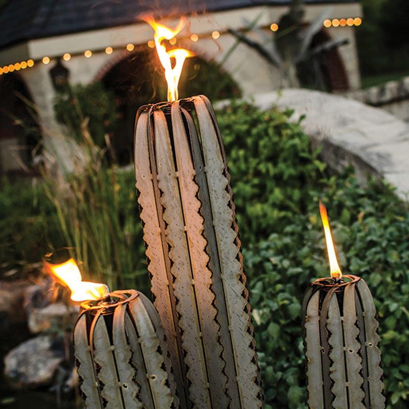 Saguaro Cactus with Three Torches 2