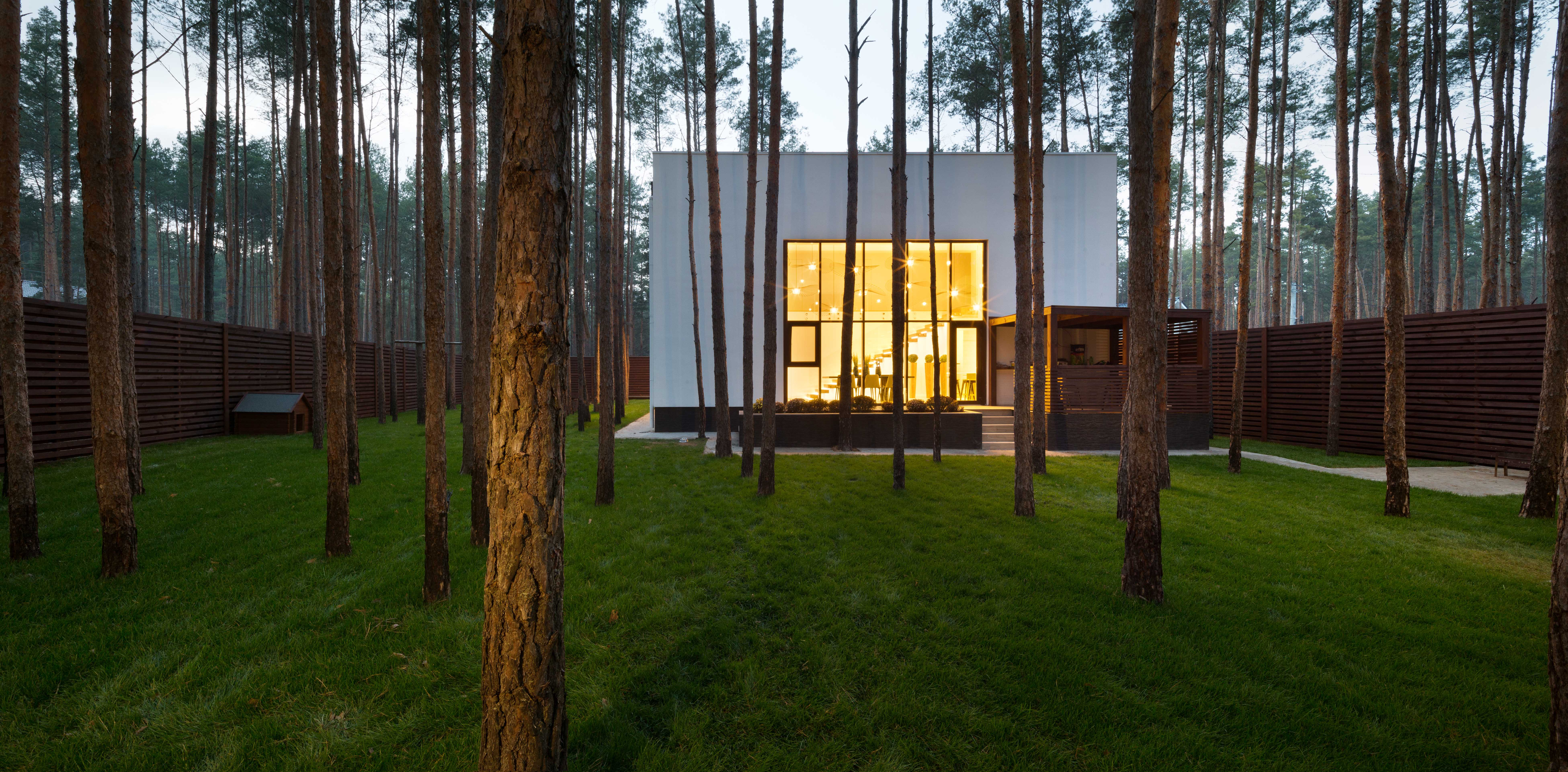 Modern forest house cube house inside is larger than outside