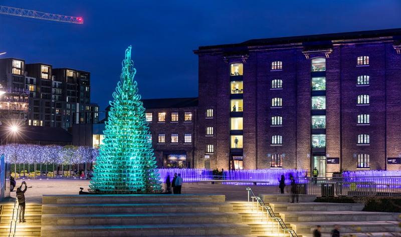christmas-trees_Photography by John Sturrock