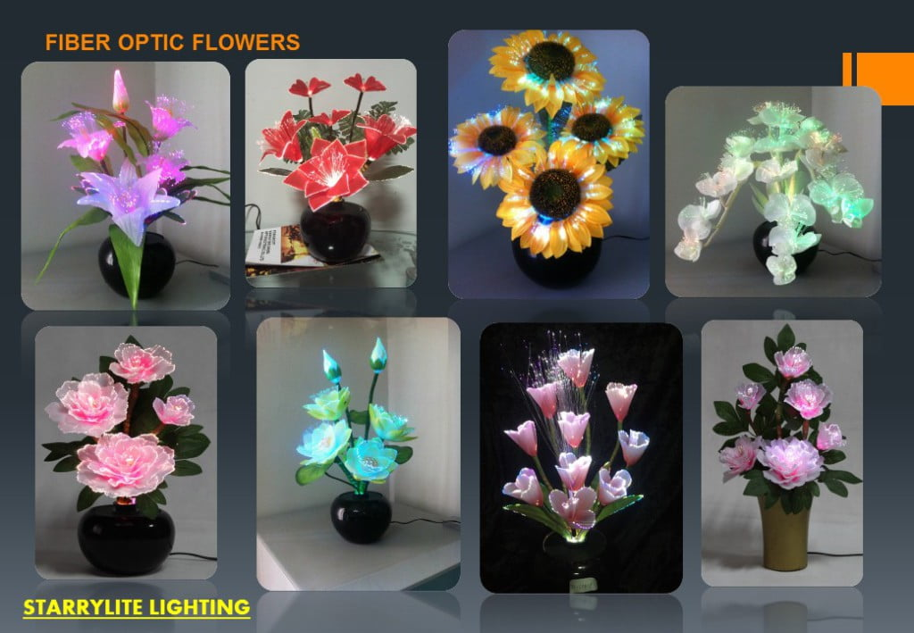Fiber Optic lighting Systems For Interior Lighting By StarryLite (13)