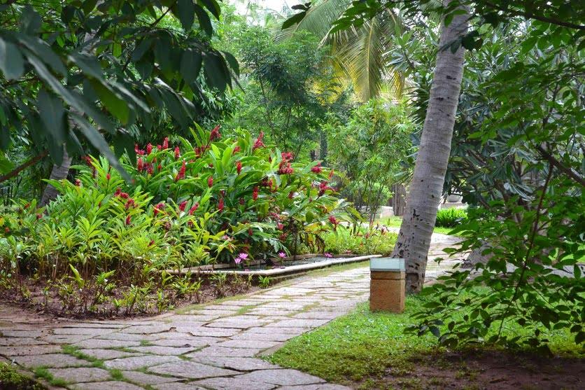 Mindfulness Meditation Yoga Retreat Center Landscape Design Example (10)