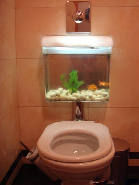 stylish water closet with fish flushing tank