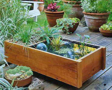 water garden,