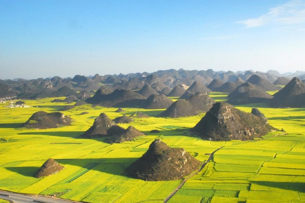 rapeseed-fields-in-luoping-china