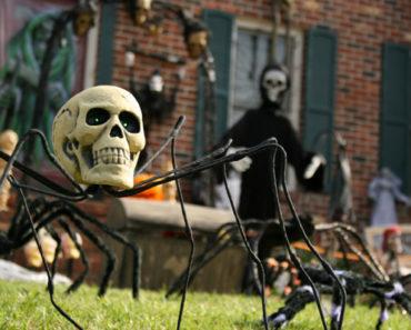 halloween decorations,